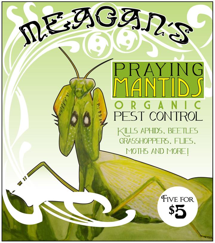 Neauvou Mantis